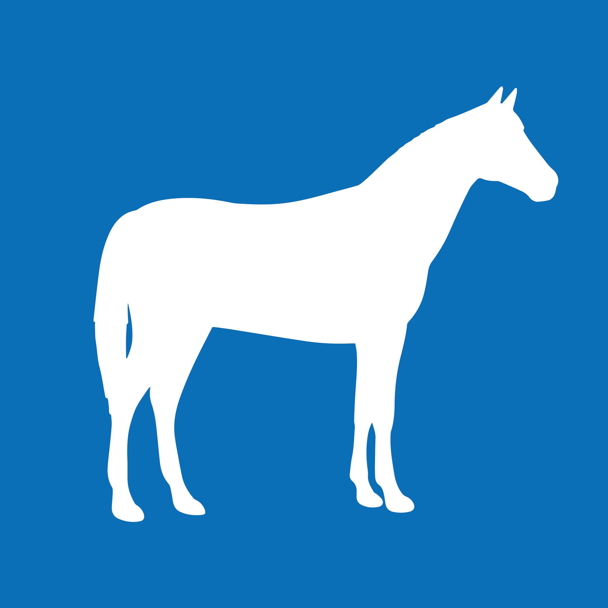 PIP in der Pferdehaltung