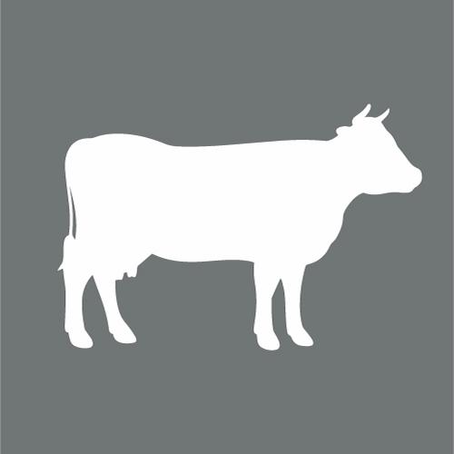 PIP in der Rinderhaltung